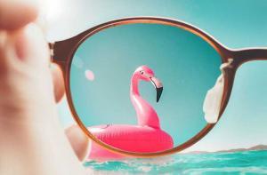 Polarized Sun Glasses Market