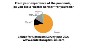 """From your experience of the pandemic, do you see a """"better normal"""" for yourself?"""