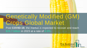 Genetically Modified (GM) Crops Market Report