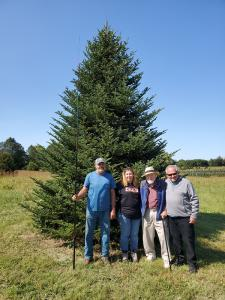 This magnificent Fraser Fir was selected for the Blue Room.