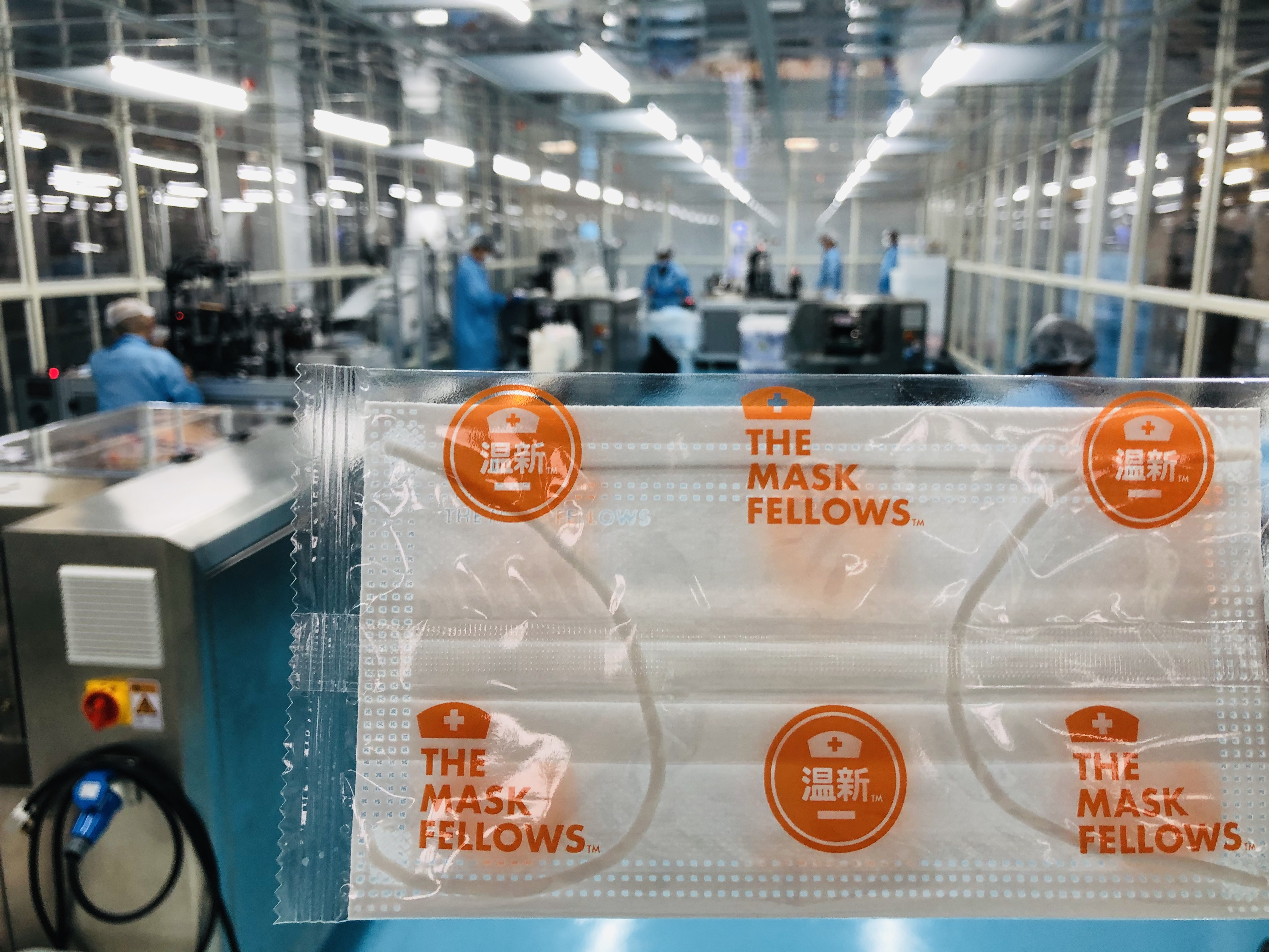 The Mask Fellows Individually Wrapped Surgical Mask