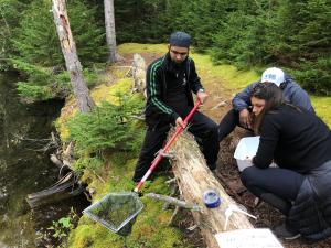 A group of UPG Sustainability Leaders working together in a natural setting