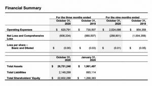 Financial Summary for the third quarter ended October 31, 2020