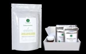 Cistus incanus + ShieldsUp Immune Support Kits - Linden Botanicals