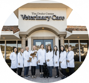 The Staff of The Drake Center For Veterinary Care