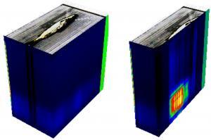 No Fish Story: BitFlow Frame Grabber Optimizes Hyperspectral Imaging System Assessing Salmon Health 1
