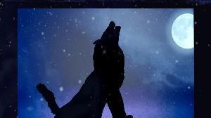 Shadow Theatre Verba - Wolf
