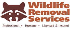 Wildlife Removal Services of Florida Logo