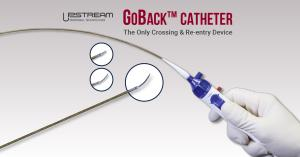 Provides intralumenal crossing and subintimal re-entry in the same catheter solution