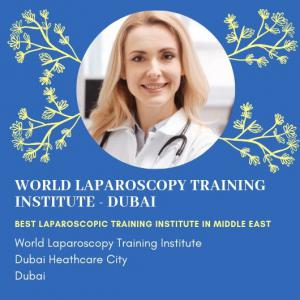 World Laparoscopy Training Institute
