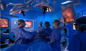 Hands On Laparoscopic Course