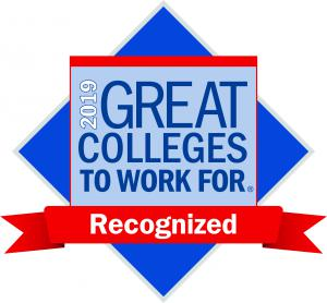 2019 Great Colleges to Work For logo